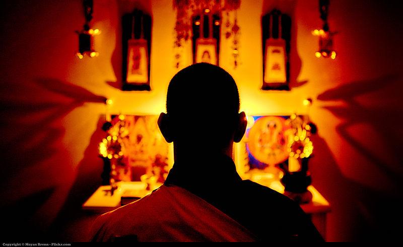 meditation fleur vie
