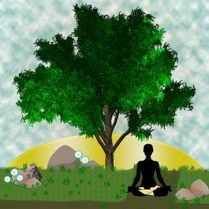 arbre-vie-bouddhisme