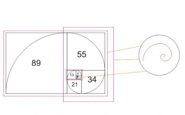 fibonacci-fractale