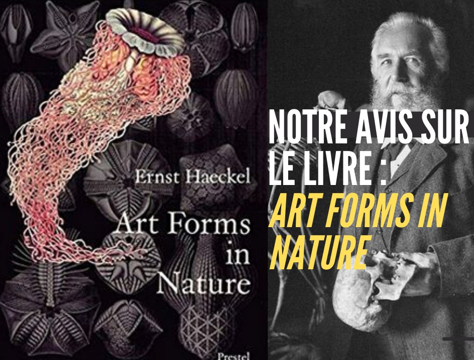 art-forms-nature