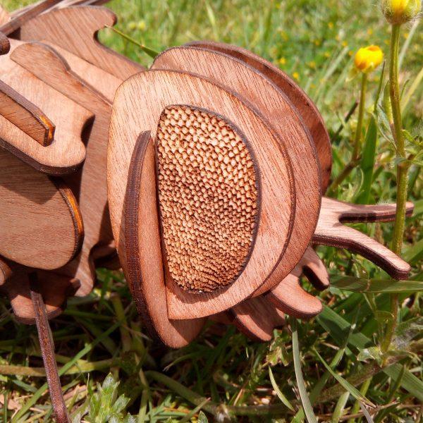 petit insecte en bois